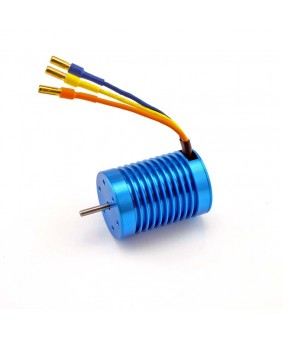 3650 Sensorless, 2-Pole